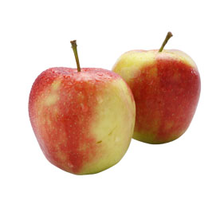 fruitsoort Appel