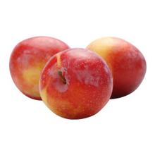 fruitsoort Pruim