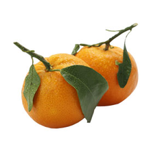 fruitsoort Clementine