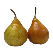 fruitsoort Durondeau
