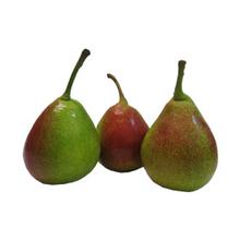 fruitsoort Qtee