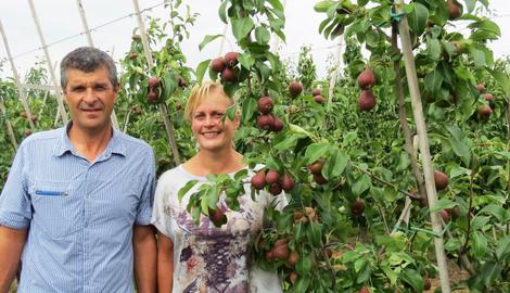Pourquoi est-ce qu'il n'y a plus de pommes et poires belges dans votre corbeille de fruits?