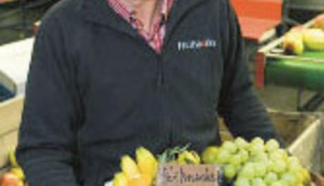 Fruitsnacks levert fruitmanden op kantoor: Gezondheidspartner van bedrijven