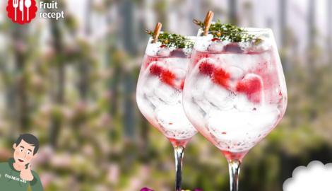 Gin tonic met frambozen