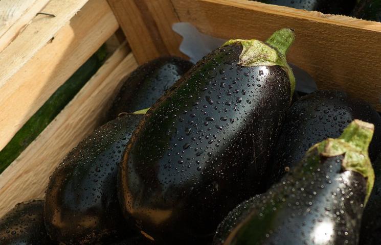Wist je dat deze 5 groenten eigenlijk fruit zijn?
