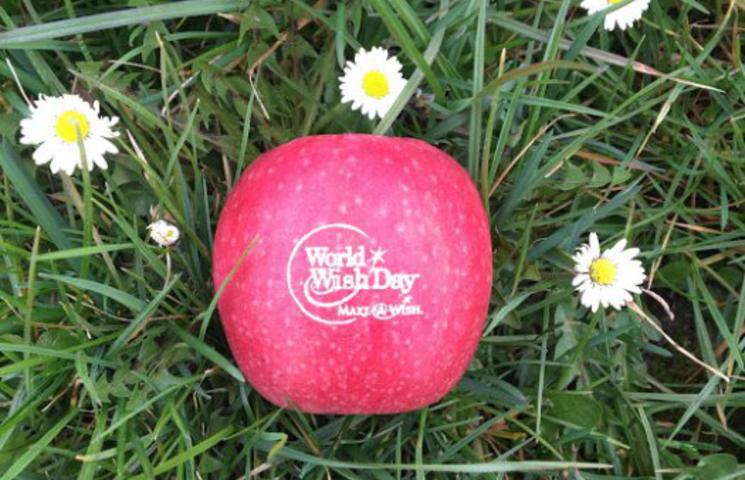 Wij steunen World-Wish-Day én onze klanten ook!