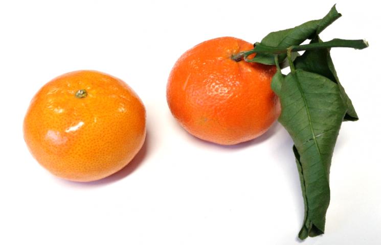 Mandarijn of clementine?