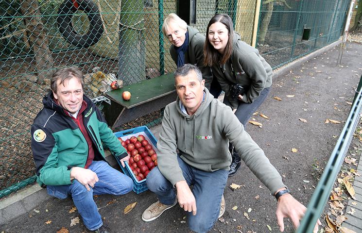 Help dieren redden terwijl je werkt (en van je fruit geniet)