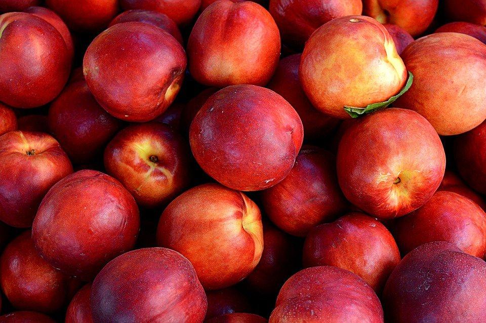 nectarines-1111852-960-720.jpg